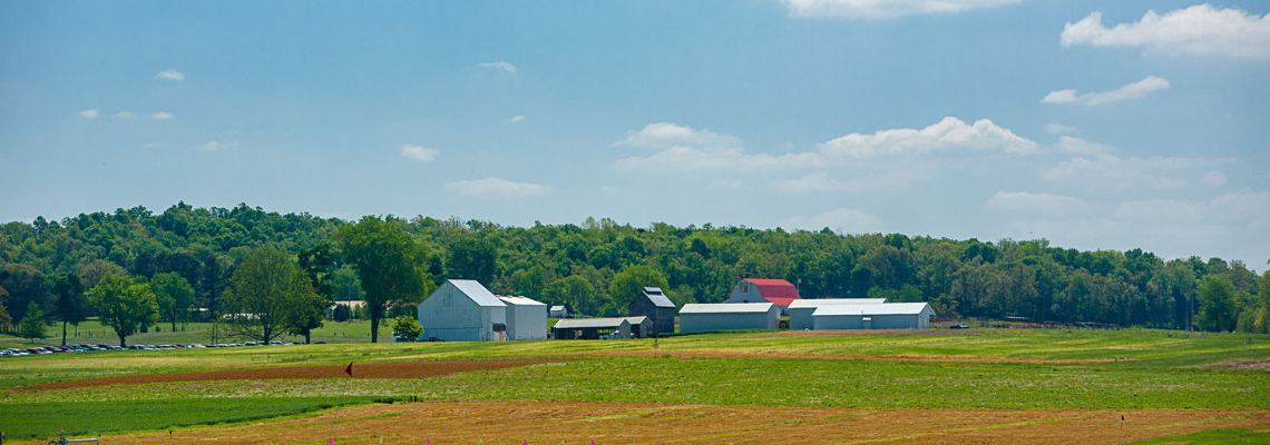 Farm landscape in Kentucky.