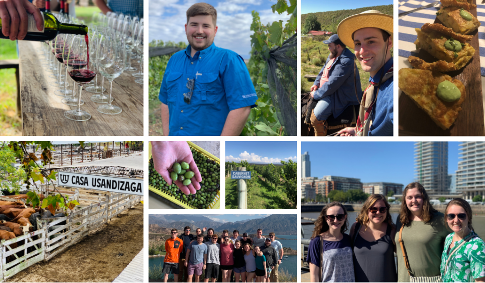 Collage of photos from education abroad 2019 trip to Argentina