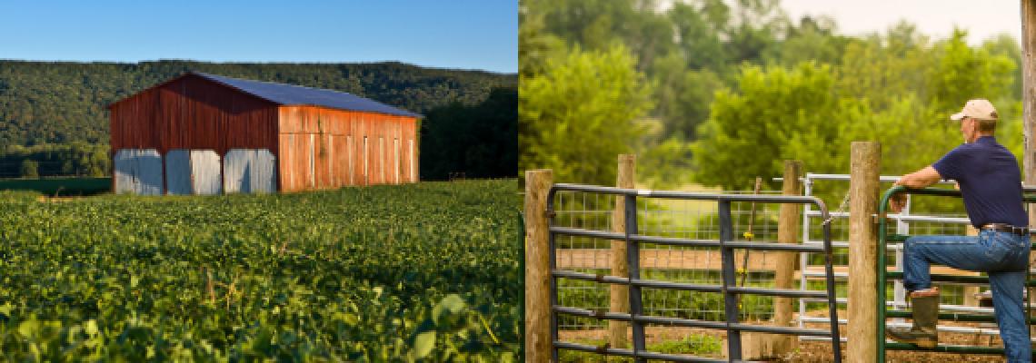 Kentucky farming landscapes.